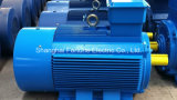 380 660 V Low Voltage 3 Phase AC Electric Induction Motor