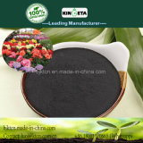 Kingeta Fertilizer Bamboo Charcoal Microbial Agent Contain Biochar