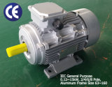 Ie2 Alu Frame High Efficiency 3-Phase AC Motor (4kw~ 6 pole)