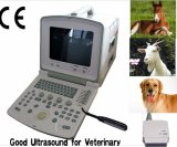 CE Portable Ultrasound Scanner (CMS600B2)