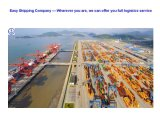Consolidate LCL/FCL Container Shipping Service From China to Worldwide