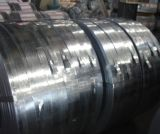 Hot Dipped Galvanized Steel Strips Made in China