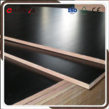 1250*2500 Big Size Film Faced Plywood for Europe Market