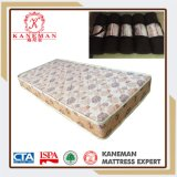 Bedroom Furniture Sleep Easy Rolled up Foam Mattress