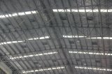 Steel Structure/Steel Structure Frame (SS-133)
