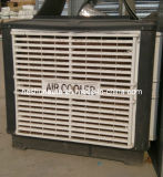 Duct Ventilation Fan/Cooling Fan/Air Cooler