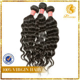 New Arrival Unprocessed 5A-Water Wave 100% India Human Hair Fashion Hair Weaving