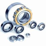 Roller Bearings (NU/NJ/NUP)