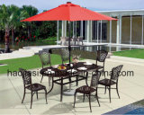 Outdoor /Rattan / Garden / Patio/ Hotel Furniture Cast Aluminum Chair & Table Set (HS 3181C&HS6130DT)