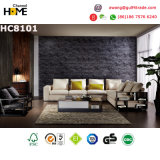 Modern Home Furniture Living Room Sofa (HC8101)