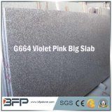 Granite Stone Building Materials Granite Slab Granite Wall Tiles