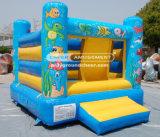 Cheer Amusement Inflatable Ocean Ball Pool