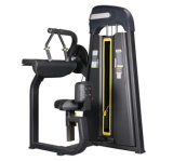 China Sells Hot Excising Body Traing Tricep Curl