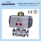 Rt52-Rt270 Series Hard Anodizing Pneuamtic Actuator