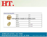 Female Thread Square Head Brass Pipe Plug Fitting
