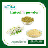 Best Price Natural Luteolin Powder