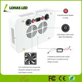300W Dimmable Full Spectrum LED Plant Grow Light for Veg and Bloom