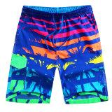 Factory OEM 2017 Summer Fashion Beach Wear Men Swim Wear Shorts