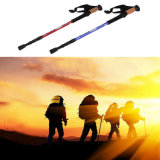 Popular Model Mountain Climbing Trekking Pole Hiking Stick