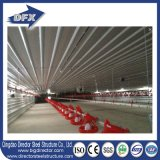 China Prefabricated Steel Structure Chicken Farm Building