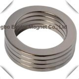 Rare Earth Permanent Neodymium Ring Magnet with Nickel Plating