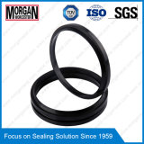 Ai/P6 Type Hydraulic Cylinder Dust/Scraper/Wiper Seal