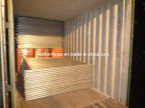 Hot Dipped Galvanized Welded Temp Fencing Panels