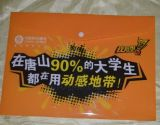 Custom Printing PP Document Bag