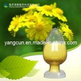 Peanut Shell Extract Luteolin 98%