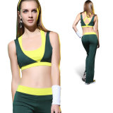 Exercise Outfits. Fitness Wear, Training Wear, Jogging Wear, Gym Wears