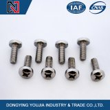 GB823 Stainless Steel Cross Recessed Small Pan Head Screw Manufactured in China