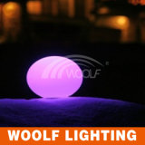 Oval Ball Home Decor Romote Control Color LED Light