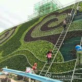 High Quality of Artificial Plants and Flowers of Vertical Garden Gu0112214103