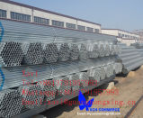 Hot Dipped Galvanized Steel Pipe Gbq235, JIS Ss400, DIN S235jr, ASTM A570