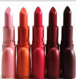 5 Colors Natural Waterproo Lipsticks Dark Color Makeup Lip Cream