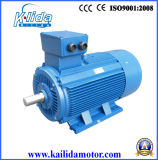 China 250kw AC Electrical Motor with Ce