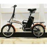 Folding Promotion Electric Bike