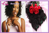 Natural Wave Cheap Price Human Hair, Good Quality,