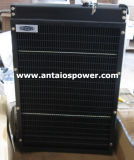 Lovol Engine Spare Parts - Radiator
