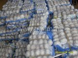 Top Quality Fresh Normal White Garlic
