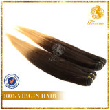 Human Hair T-Color Straight Virgin Remy Human Hair