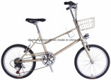 CT20nt210 20inch Steel City Bike with 6 Speed