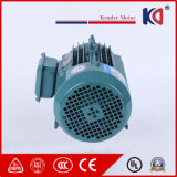 High-Efficiency Asynchronous AC Electric (Electrical) Motor with Wholesale Prices