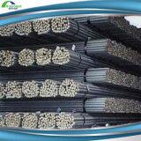 12mm Iron Bar/Steel Rebar/Deformed Steel Bar