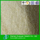 Top Quality Halal Beef Gelatin in Made in China