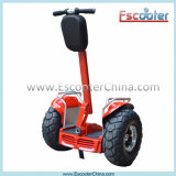 New Arrived Self Balancing E Motorcycle with Ce FCC