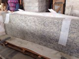 Santa Cecilia Light Granite Vanity Top Countertop