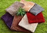 High Quality 100% Polyester Chenille Bath/Door/Floor/Area Carpet/Mat/Rug