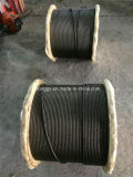 Black Steel Wire Rope, Oil Wire Rope, Ungalvanized Steel Wire Rope 19*7