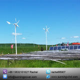 400W off Grid Small Wind Turbine Generator Power Supply System